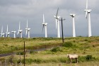 green-sustainable-power-wind