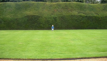 These Hedges Need Trimming