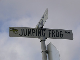 A Frog-Jumping Double Standard on Food Subsidies