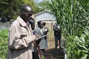 Analyzing Farming Techniques
