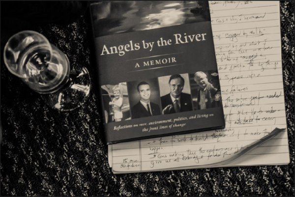 Angels by the River authored by Gus Speth at IPS reception