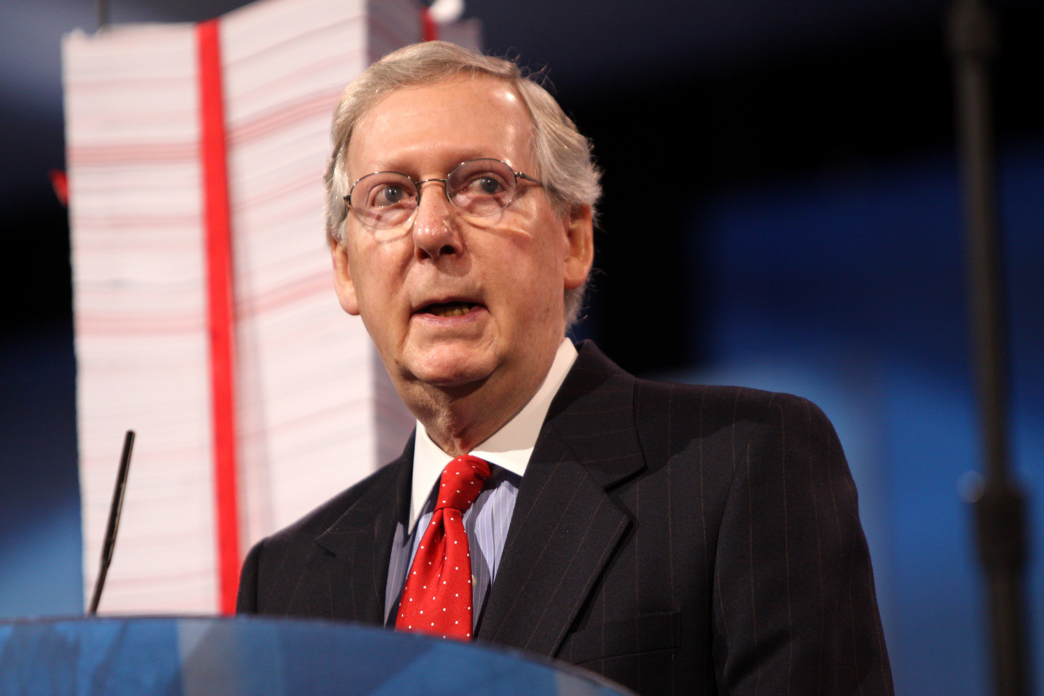 What Are We Paying Mitch McConnell For?