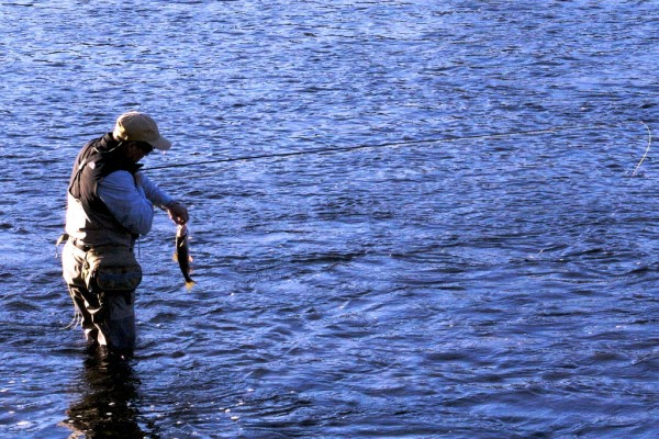 catch-release-fishing