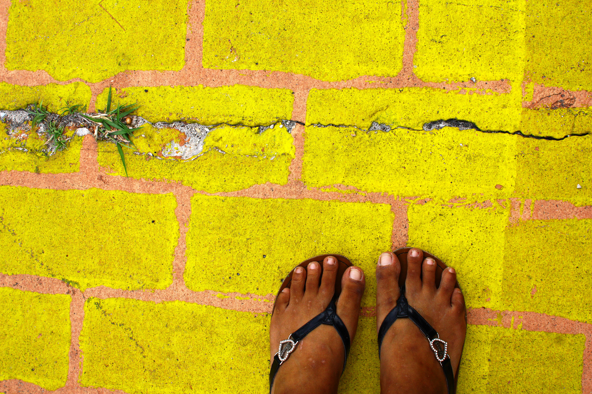 A Yellow-Brick Road for Immigrant Women